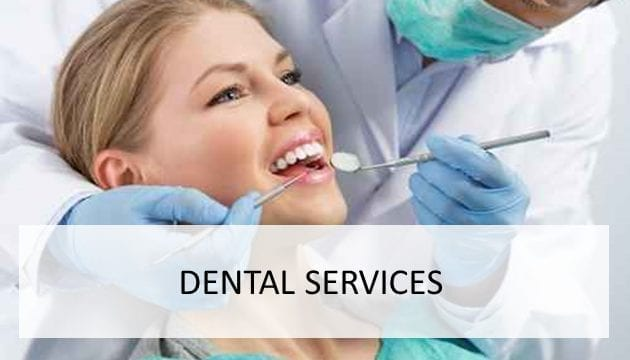 Dental Services Niche